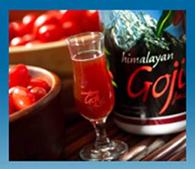 Goji Juice Distributor And Himalayan Goji Juice Network Marketing Home Business