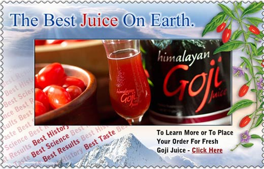 Goji Juice Gochi Distributor Home Business Network Marketing